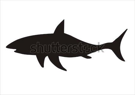 shark warning flag Stock photo © tony4urban