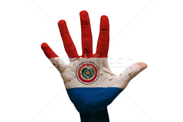palm flag paraguay Stock photo © tony4urban