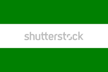 Rotterdam şehir bayrak büyük boyut Hollanda Stok fotoğraf © tony4urban