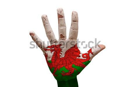 Dłoni banderą Cypr człowiek strony malowany Zdjęcia stock © tony4urban