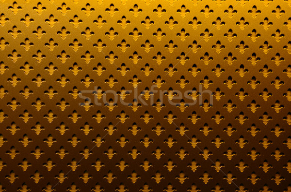 золото железной совета текстуры Iris цветок Сток-фото © tony4urban