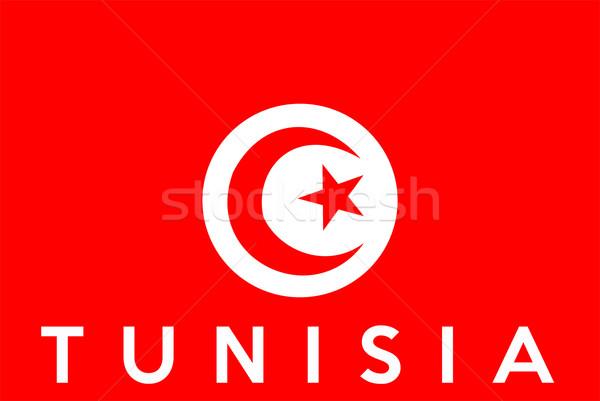 Pavillon Tunisie grand taille illustration pays Photo stock © tony4urban