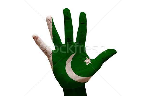 Palmiye bayrak Pakistan adam el boyalı Stok fotoğraf © tony4urban