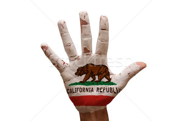 Palm vlag Californië man hand geschilderd Stockfoto © tony4urban