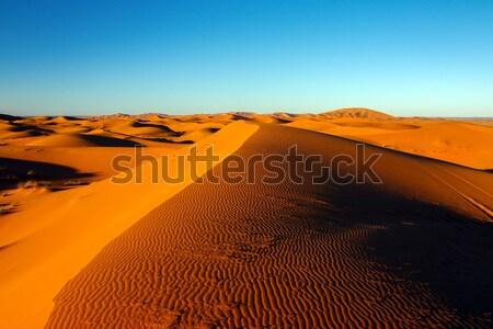 サハラ砂漠 砂漠 砂丘 死 谷 砂丘 ストックフォト © tony4urban