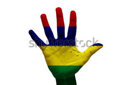Palm флаг Габон человека стороны окрашенный Сток-фото © tony4urban