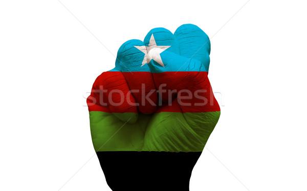 Bandeira punho homem mão pintado país Foto stock © tony4urban