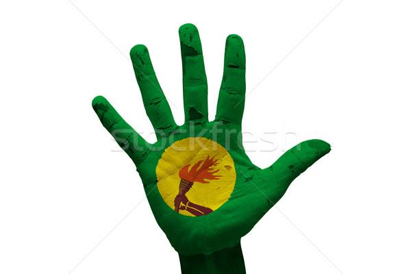 Palma bandera Congo hombre mano puno Foto stock © tony4urban