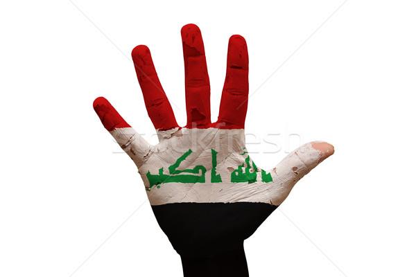 Palmiye bayrak Irak adam el boyalı Stok fotoğraf © tony4urban