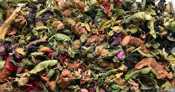 Té Marruecos secar plantas patrón flor Foto stock © tony4urban