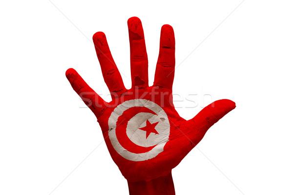 palm flag tunisia Stock photo © tony4urban