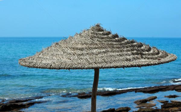 Napernyő nyár idő zárt részlet tengerpart Stock fotó © tony4urban