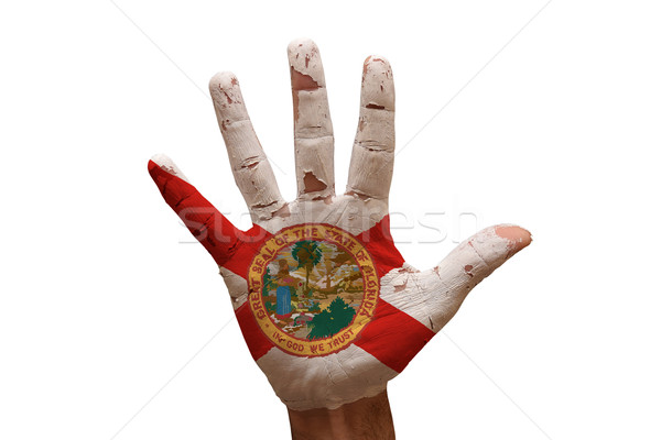 手のひら フラグ フロリダ 男 手 描いた ストックフォト © tony4urban