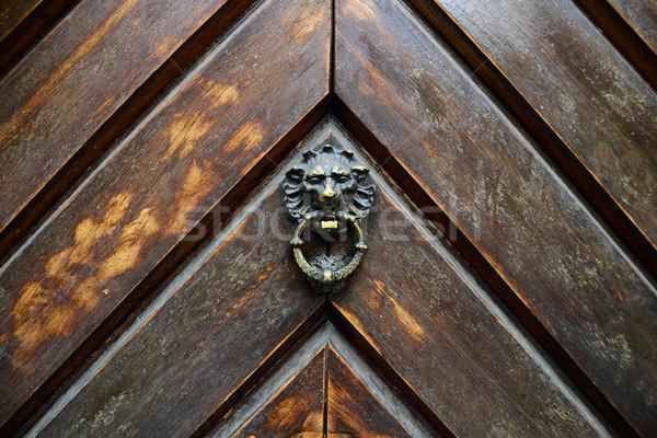 Ahşap kapı Metal işlemek eski ahşap aslan Stok fotoğraf © tony4urban
