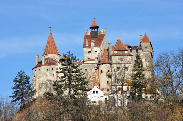 bran castle Stock photo © tony4urban