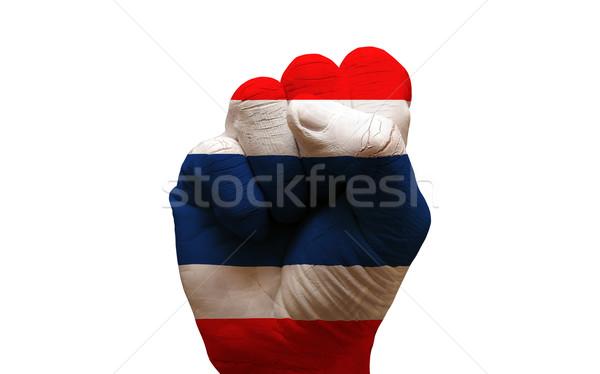 Foto d'archivio: Bandiera · pugno · uomo · mano · verniciato · paese
