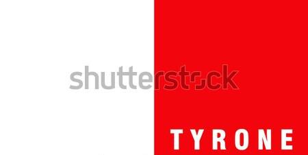 Banderą Malta duży rozmiar ilustracja kraju Zdjęcia stock © tony4urban