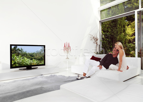 Beautiful Couple Watching TV Stock photo © toocan