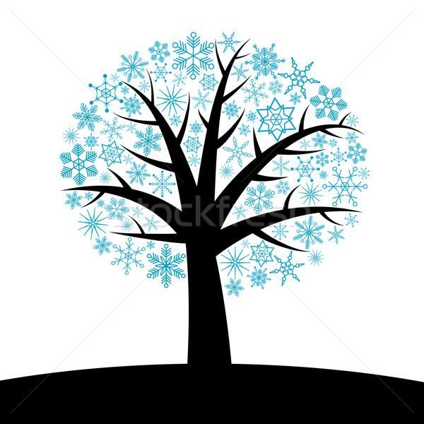 Kış ağaç soyut kar taneleri bahar doğa Stok fotoğraf © toponium