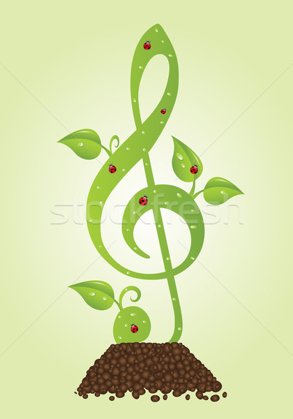 Verde folhas joaninhas água projeto folha Foto stock © toponium