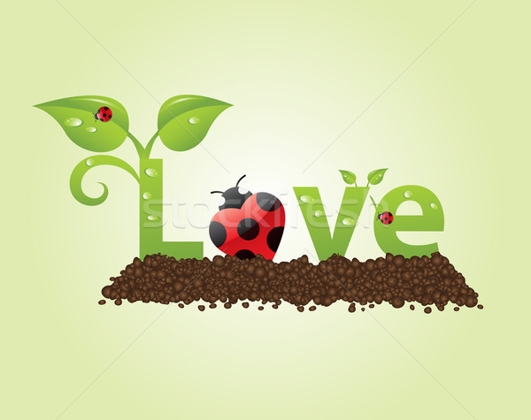 Amour grand naturelles style coccinelles Photo stock © toponium