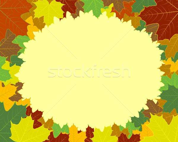 Bordo quadro folhas árvore primavera abstrato Foto stock © toponium