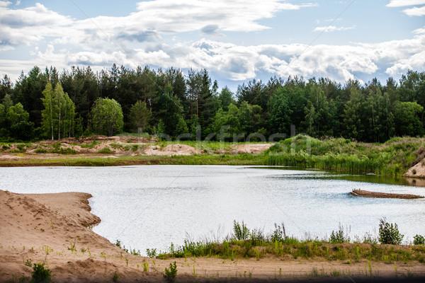 Stunning vibrant Autumn woodland reflected in still lake water landscape Stock photo © traza