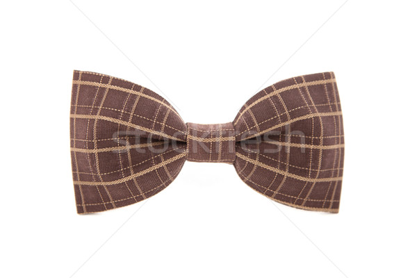 Brown striped men's bow tie isolated on white background. Stock photo © traza