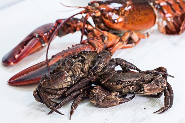 Crustacean Stock photo © trexec
