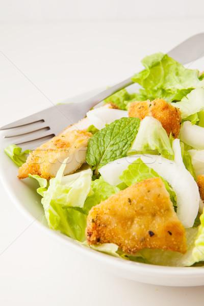 Salada de frango frango salada alface cebolas branco Foto stock © trexec