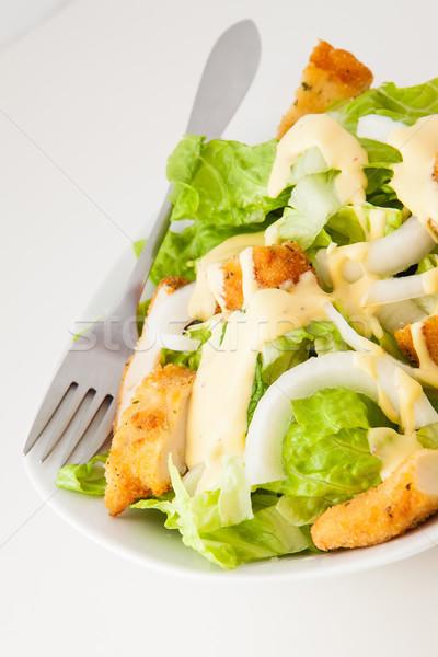 Kip salade sla uien witte Stockfoto © trexec