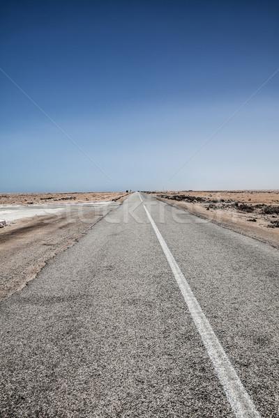 extreme desert road Stock photo © trexec