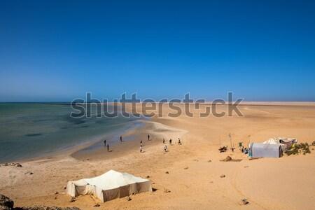 Hagyományos Szahara sivatag tenger western égbolt Stock fotó © trexec