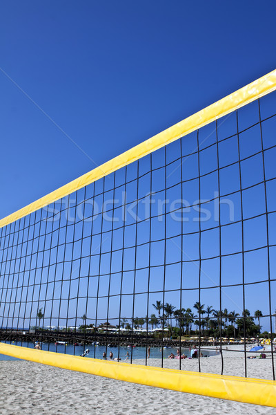Vôlei com pormenor perfeito blue sky praia Foto stock © trexec