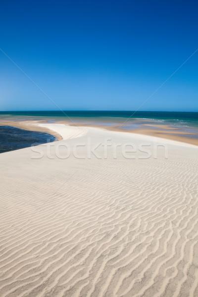 Okyanus beyaz kumul batı sahara çöl Stok fotoğraf © trexec