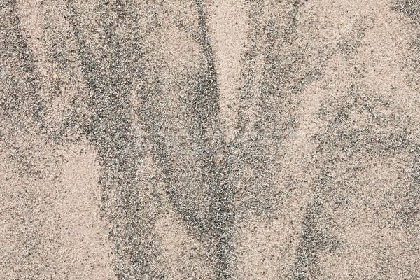 песок шаблон подробный солнце фон путешествия Сток-фото © trgowanlock