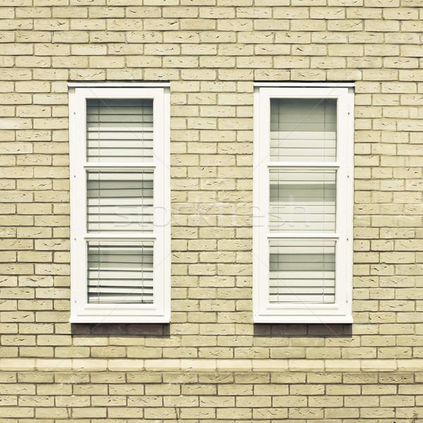 Pencereler çift modern duvar ev doku Stok fotoğraf © trgowanlock