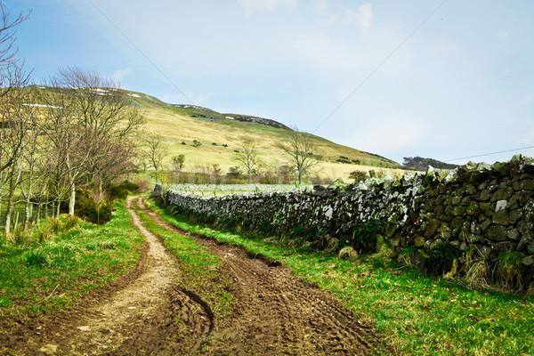 Country track Stock photo © trgowanlock