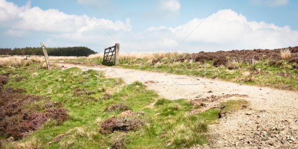 Sóder út dombok Anglia természet zöld Stock fotó © trgowanlock