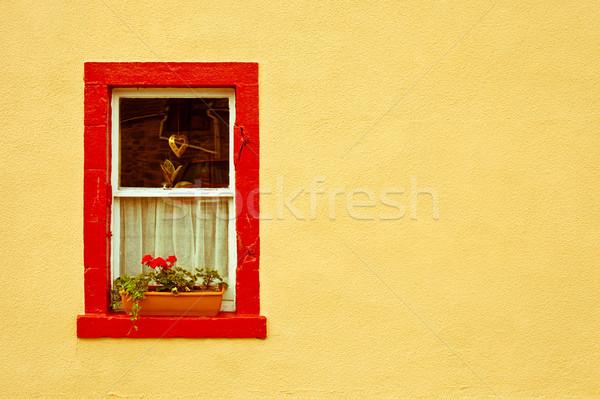 Huisje venster trillend Rood Geel Stockfoto © trgowanlock