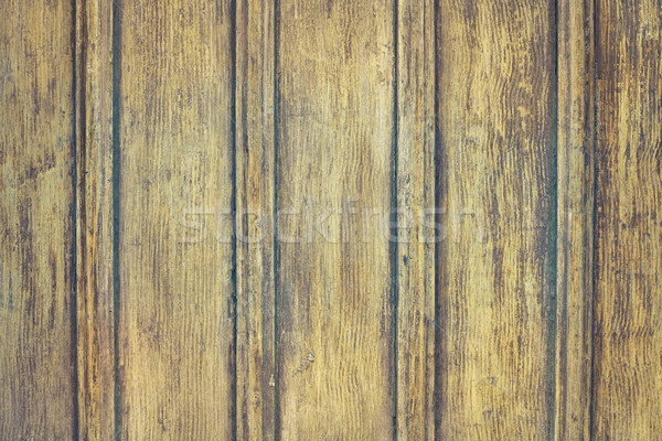 Foto stock: Puerta · árbol · fondo