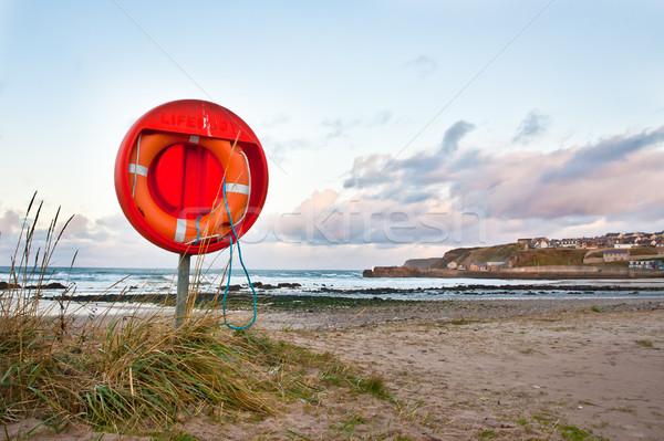 Lifebuoy Stock photo © trgowanlock