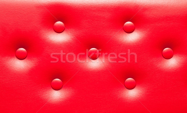 Leather upholstery Stock photo © trgowanlock