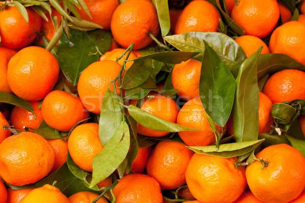 Friss textúra absztrakt levél narancs farm Stock fotó © trgowanlock