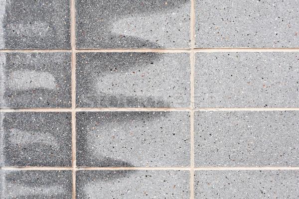 серый каменной стеной воды здании домой Сток-фото © trgowanlock