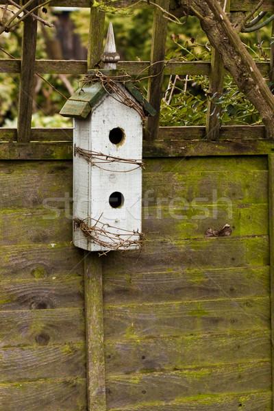 Vak houten nest huis boom voorjaar Stockfoto © trgowanlock