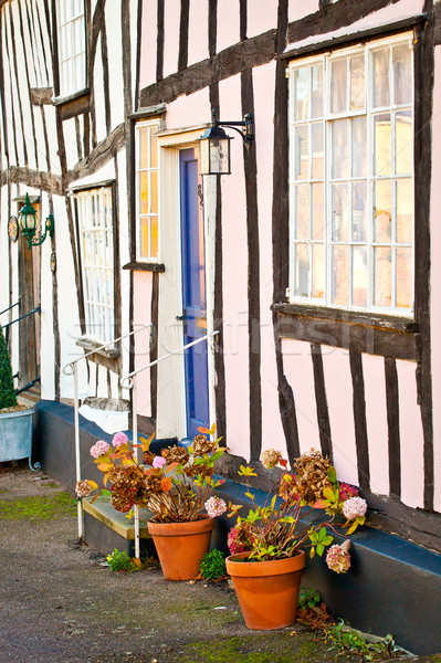 Old houses Stock photo © trgowanlock