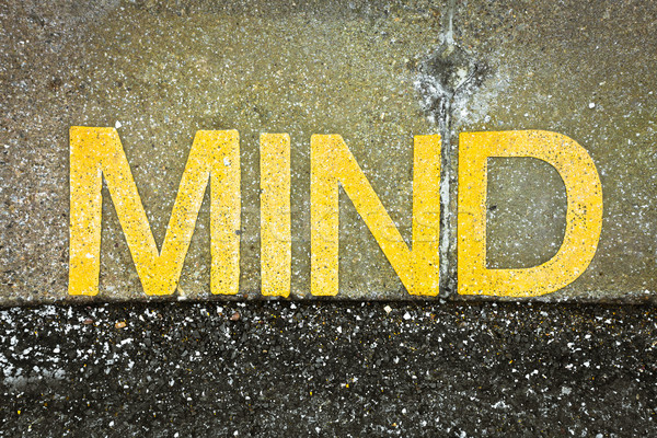 Mind sign Stock photo © trgowanlock