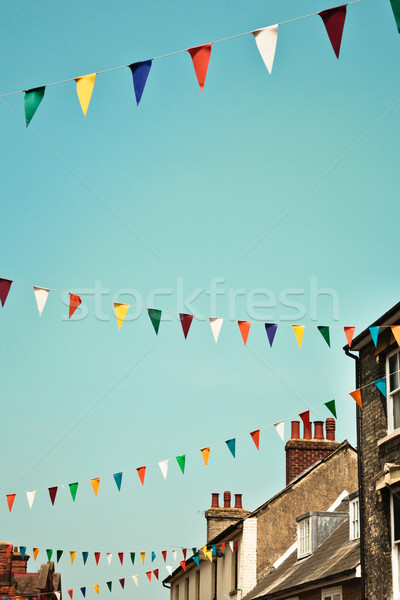 Bunting Stock photo © trgowanlock