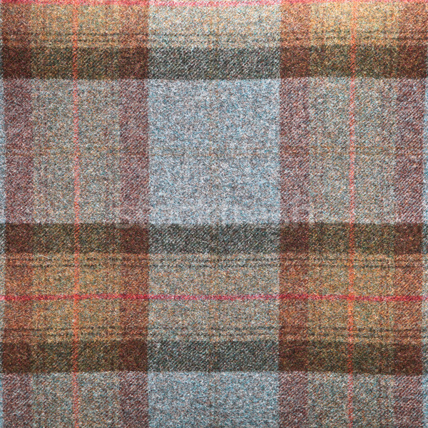 Tartan wool Stock photo © trgowanlock